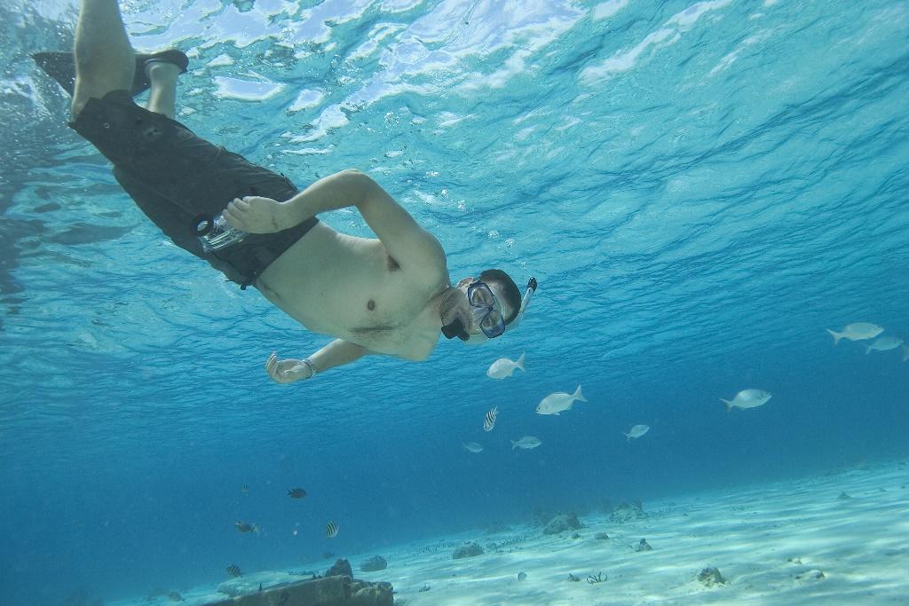 vacances plongée