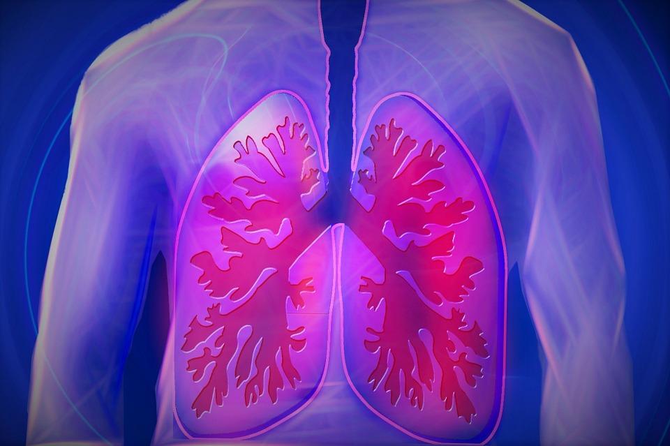 poumon-respir